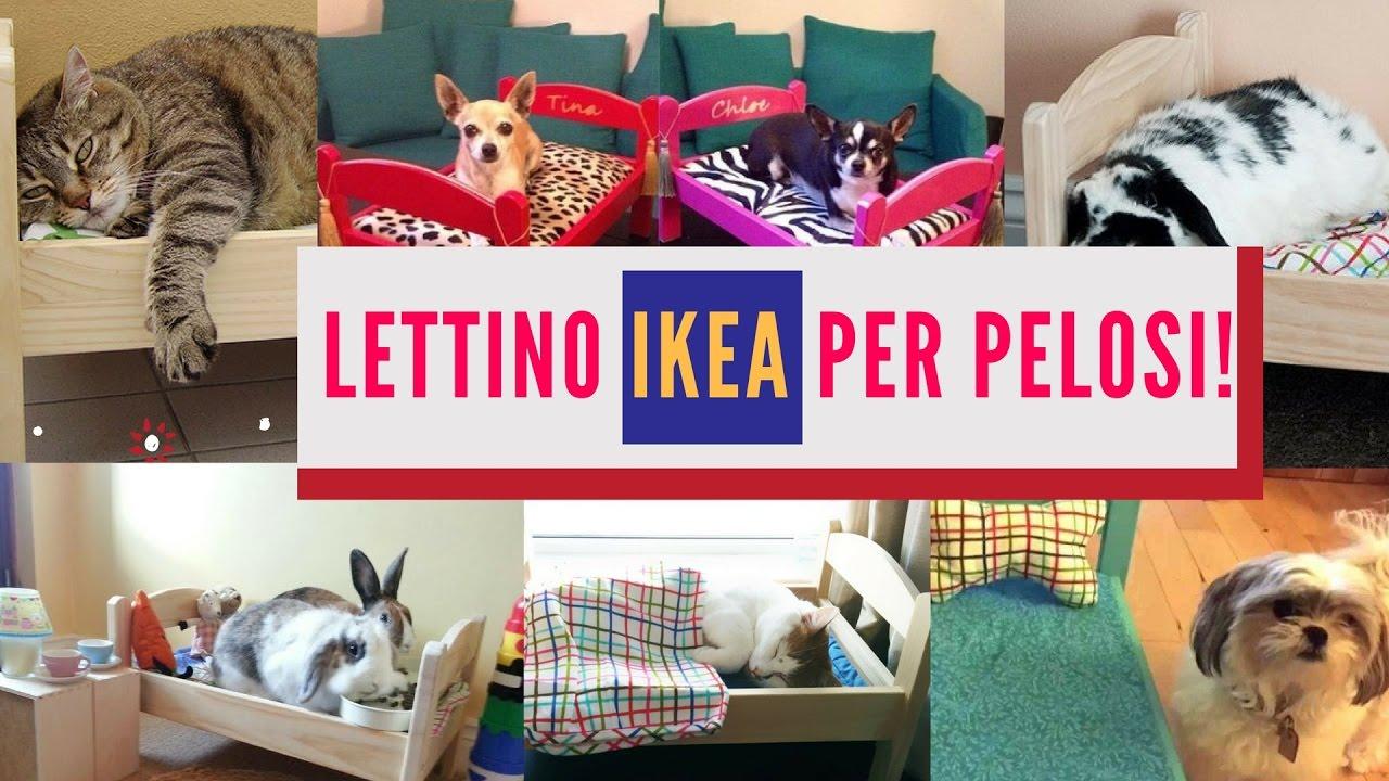 Cuccia Cane Grande Ikea lettino ikea per il cane! una cuccia originale, economica e semplice da  montare!