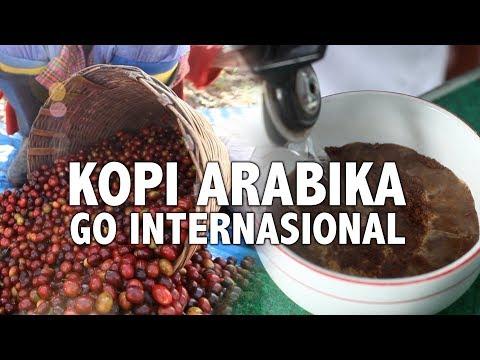 tempat-produksi-kopi-arabika-yang-go-internasional