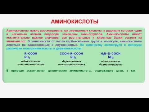 Строение, свойства и функции белков. Аминокислотный состав