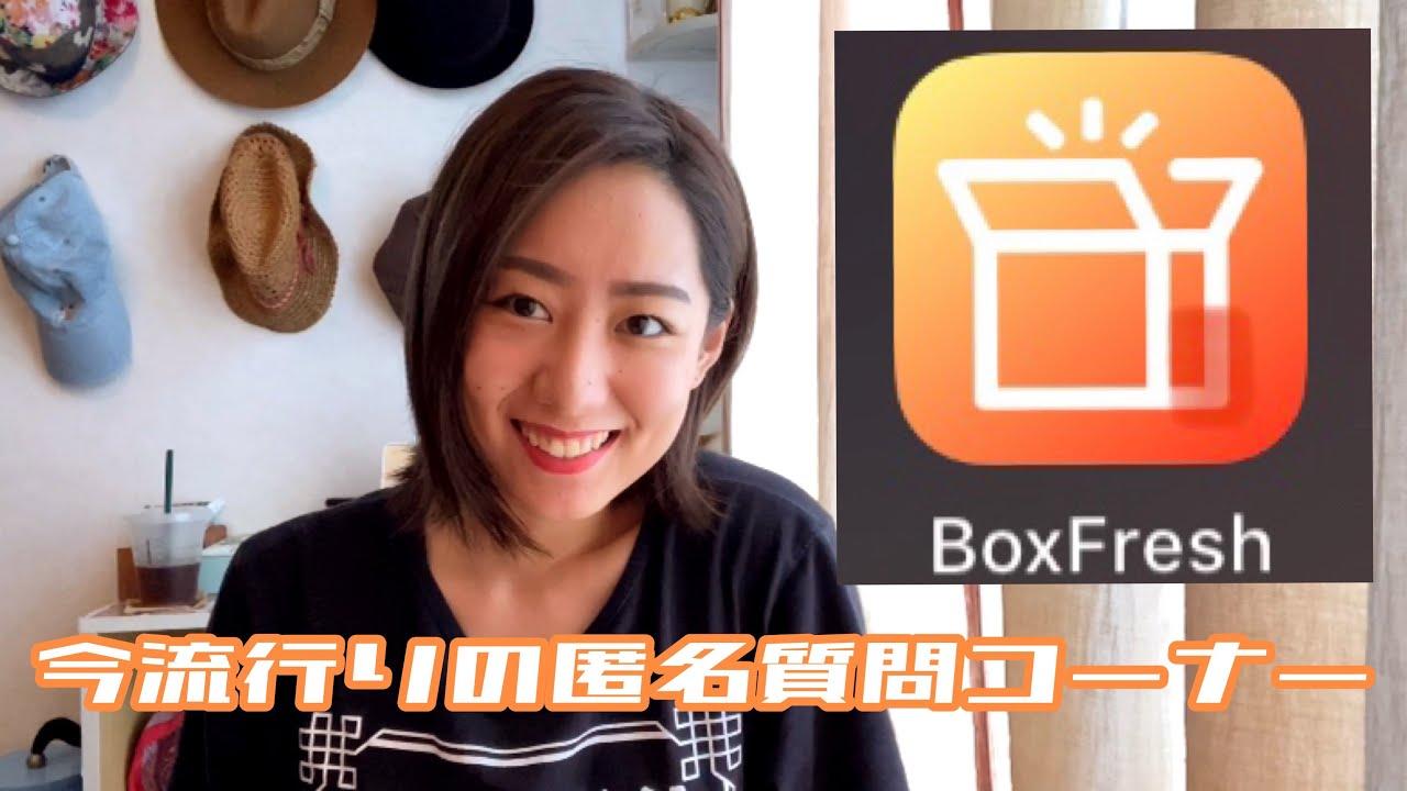 Boxfresh 箱 インスタ 質問