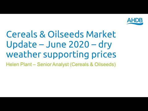 Cereals & Oilseeds Market Update – June 2020 – Dry Weather Supporting Prices