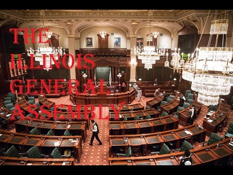 The Illinois General Assembly | Politics and the World