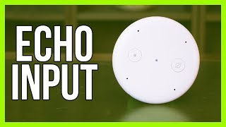 Echo Input Review - The Cheapest Amazon Echo Device!