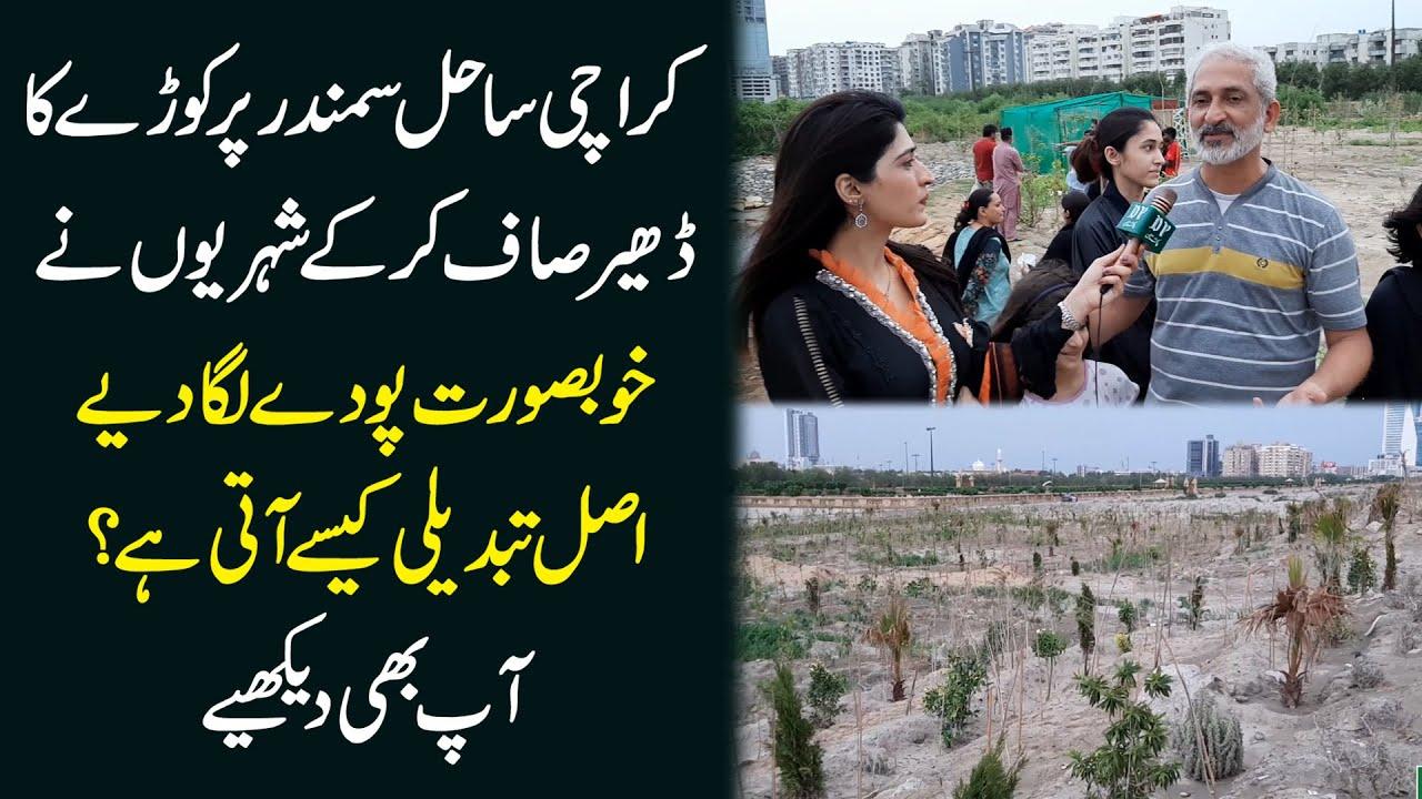 Karachi sahile samandar pr kurray ka dher saf kr k shehrio ne khubsurat poday lga diye, Ap b dekhiye