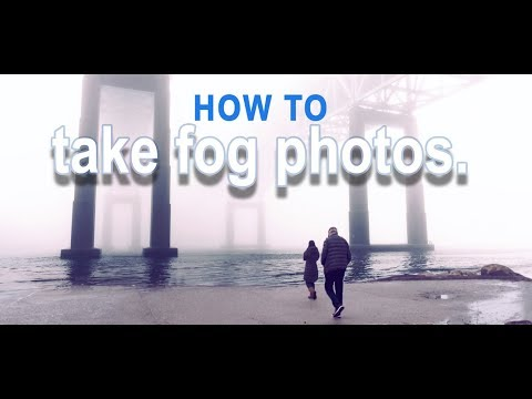 FOG Photos!