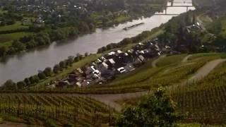 Weinort Lieser an der Mosel