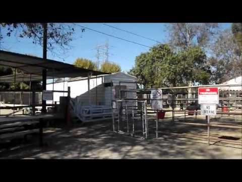 Lakewood Equestrian Center Youtube