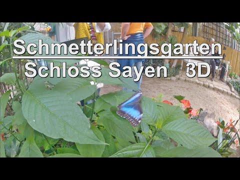 Go Pro 3 D Schmetterlingsgarten Schloss Sayen 3D ( watch with the flash player)