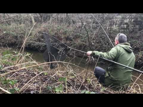 Hour Fishing On The Trent, Stoke-On-Trent