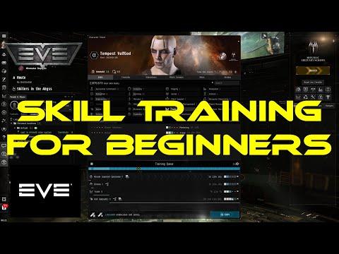 Eve Online Skill Training for Beginners