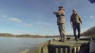 Great Winter Crappie Fishing on Green River Lake