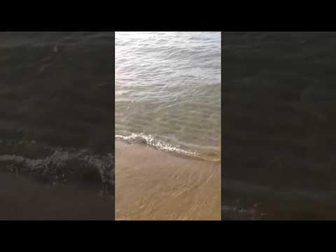 Spiaggia Avola - Bed and breakfast La Terrazza sul mare - YouTube