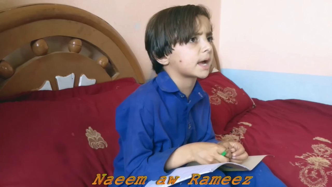Download pashto funny video//Qadar//NaeemawRameez
