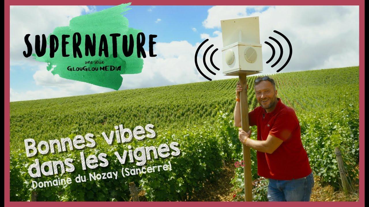 SuperNature - Ep. 1 Bonnes vibes dans les vignes