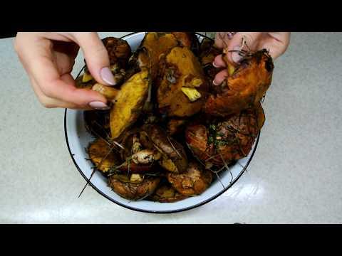 Как правильно готовить лесные грибы. Жареные маслята с картошкой