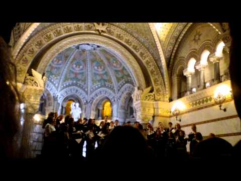 Pro Musica Hungarica Choeur de l'Université Lóránd Eötvös de Budapest - Lyon Fourvière 8/13