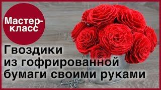 Гвоздики из гофрированной бумаги. Мастер-классы на Подарки.ру