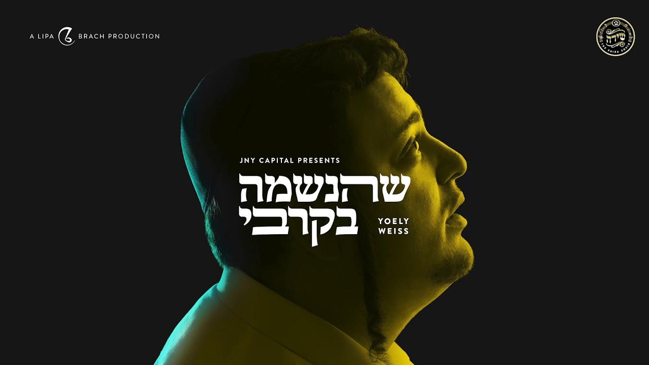 Yoely Weiss - Shehaneshomo B'Kirbi - Single | יואלי ווייס - שהנשמה בקרבי