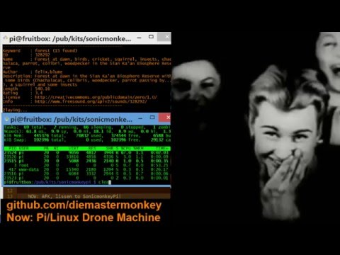 Replay: Rapberry Pi/Linux Drone Ambiance Generator Testing and Development