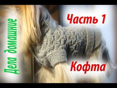 Кофта для собаки своими руками.Часть 1.Уроки вязания на канале Дела домашние.