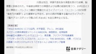 ユニコーン&電大、川西幸一脳梗塞のためライブキャンセル 音楽ナタリー...
