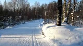 Парголовская лыжня, 20 февраля 2011