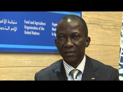 Déclaration de Ouro Koura Agadazi, Ministre de l'agriculture, de l'élevage et de la pêche du Togo