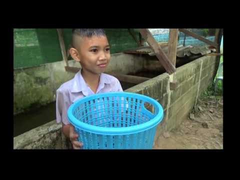 ภาพยนตร์สั้น โรงเรียนบ้านห้วยห้างป่าสา สพป ชร 1