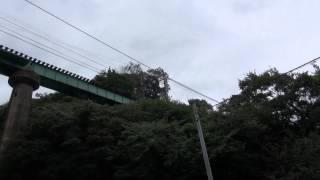 伊豆急全線ウォークの途中、偶然撮影出来ました。