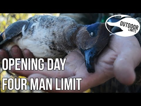 Opening Day FOUR MAN LIMIT | Public Land Kansas Duck Hunt