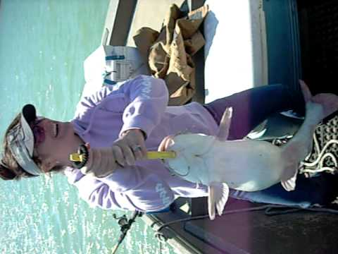 Laura's 20 pd bluecat release- Hill Country Fishin...