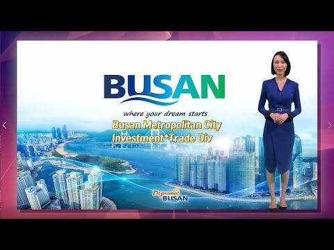 [Invest KOREA] Busan City Investment Promotion IR 图片