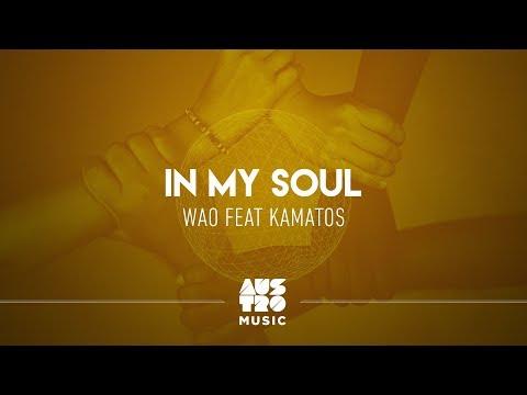 WAO feat. Kamatos - In My Soul [Lyric Video]