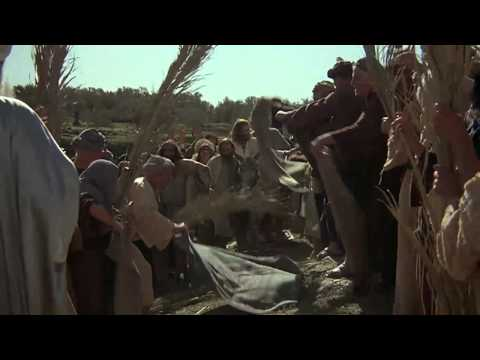 JESUS (English) Jesus' Triumphal Entry-Palm Sunday