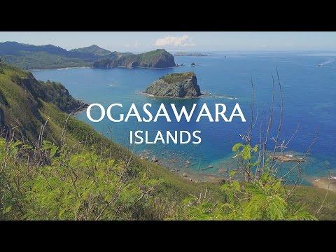 OGASAWARA Beautiful Islands 2015 - 小笠原 父島の美しい海