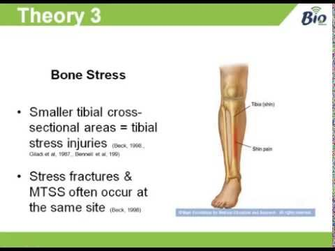 Shin Splints Medial Tibial Stress Syndrome Youtube