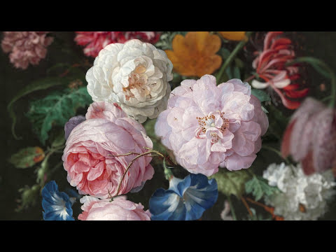 Art from the Dutch Golden Age