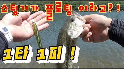 다미끼 플로팅 타입 스팅거 리뷰 / DAMIKI FLOAT TYPE STINGER REVIEW / 배스낚시 / bassfishing