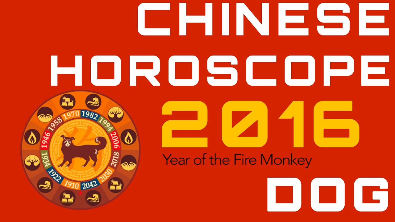Dog 2016 Chinese Horoscope Predictions