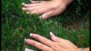 Đang cắt cỏ, cô gái phát hiện chỗ khác thường, đào lên mới thấy điều vô cùng ngạc nhiên