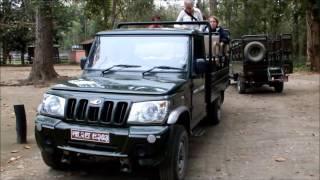 ジープサファリで野生のサイに出会う(ネパールチトワン国立公園のすべて)Chitwan National Park,Nepal 2015 (泊:ホテルジャングルビスタ)