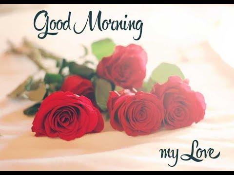 Good morning love messagewhatsapp videoromantic greetings youtube good morning love messagewhatsapp videoromantic greetings m4hsunfo