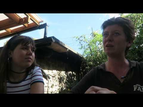 Spitalfields City Farm (Part 1)