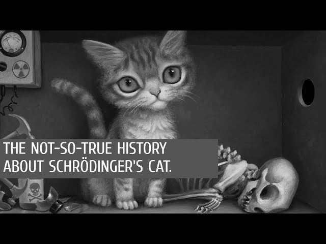 The (Not-So) true history about Schrödinger's Cat