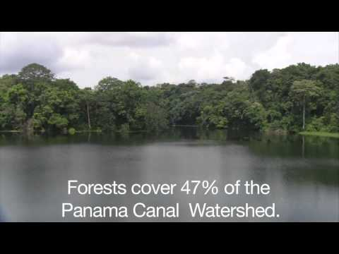 Sustainability: Importance of the Panama Canal Watershed