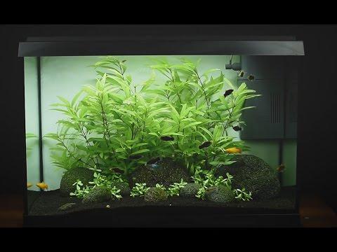 juwel aquarium primo 70 led einrichtungsbeispiel tutorial youtube. Black Bedroom Furniture Sets. Home Design Ideas