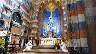 The pontifical basilica of saint anthony padua (italian: pontificia di sant'antonio padova) is a roman catholic church and minor in p...