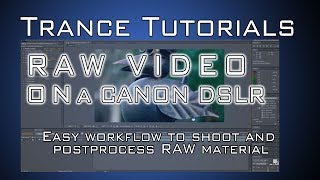 Tutorial: RAW Video on a canon DSLR (after effects)