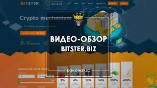 Bitster - Заработок в Интернете - RichMonkey.biz
