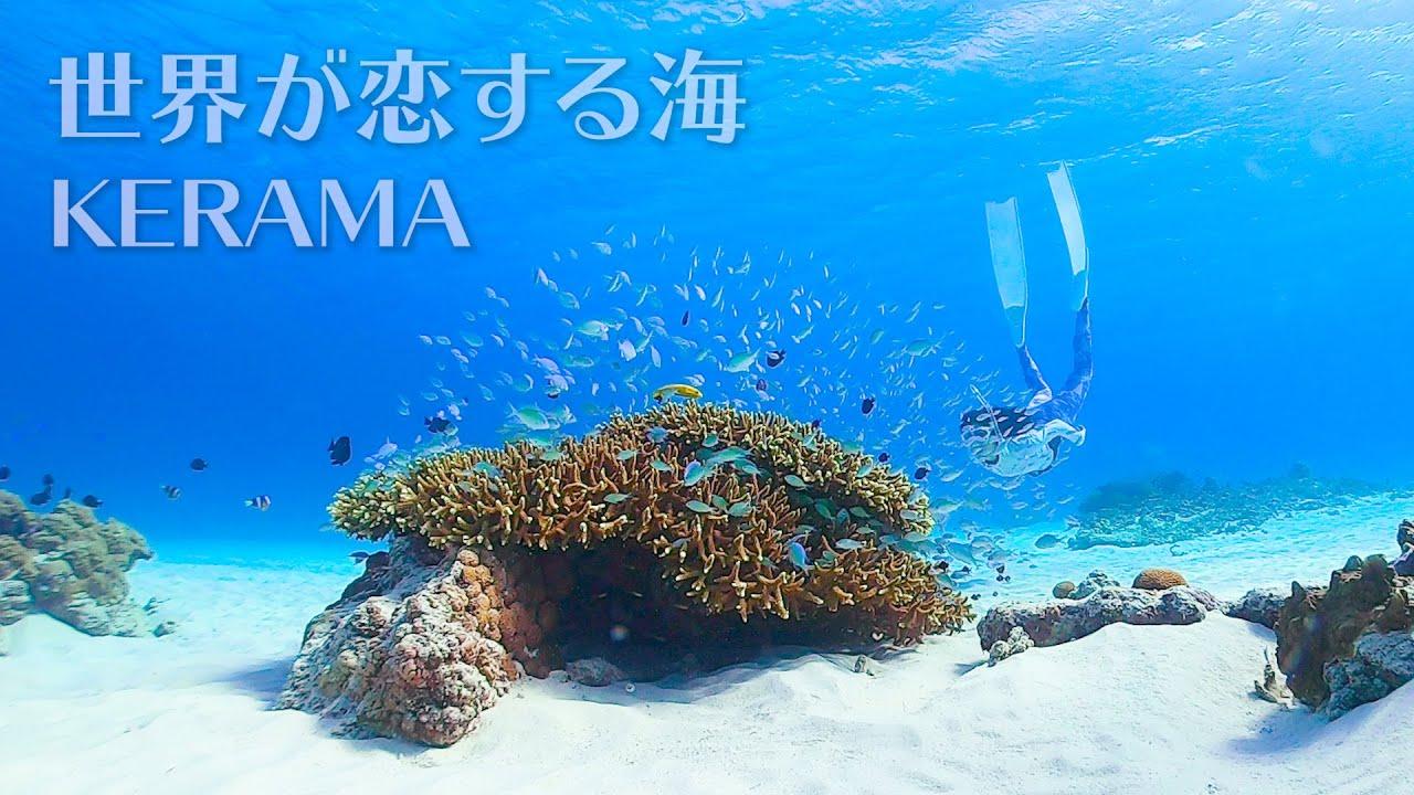Snorkeling in Kerama   慶良間でシュノーケリング